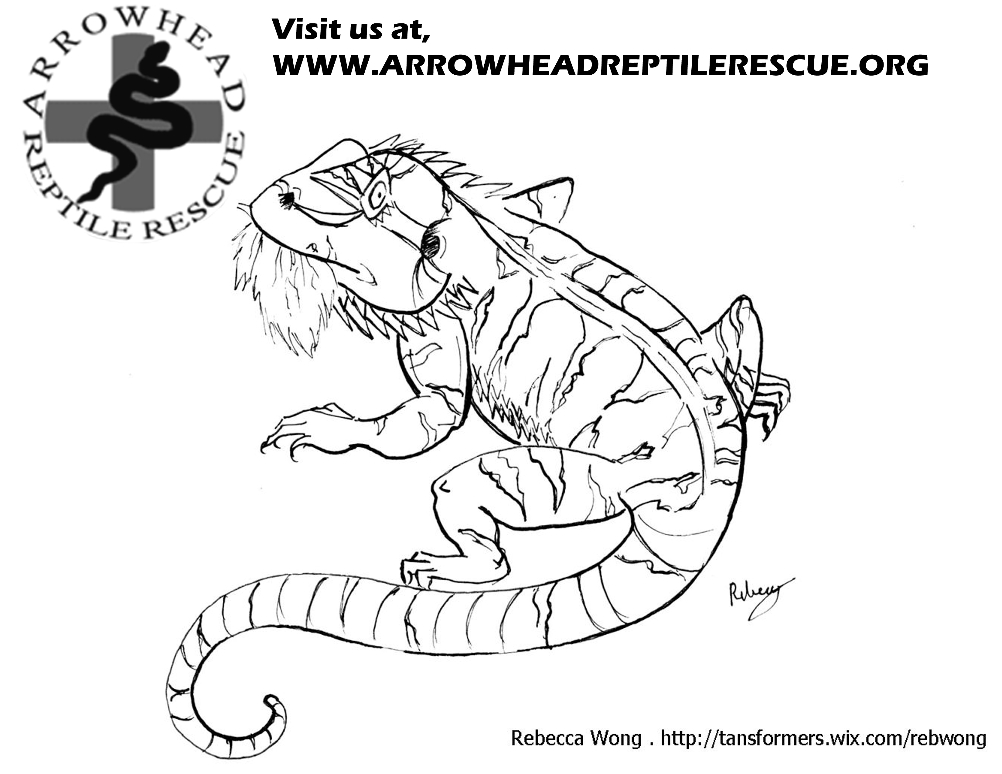 Free Coloring Pages Of Bearded Dragons Bearded Coloring Pages